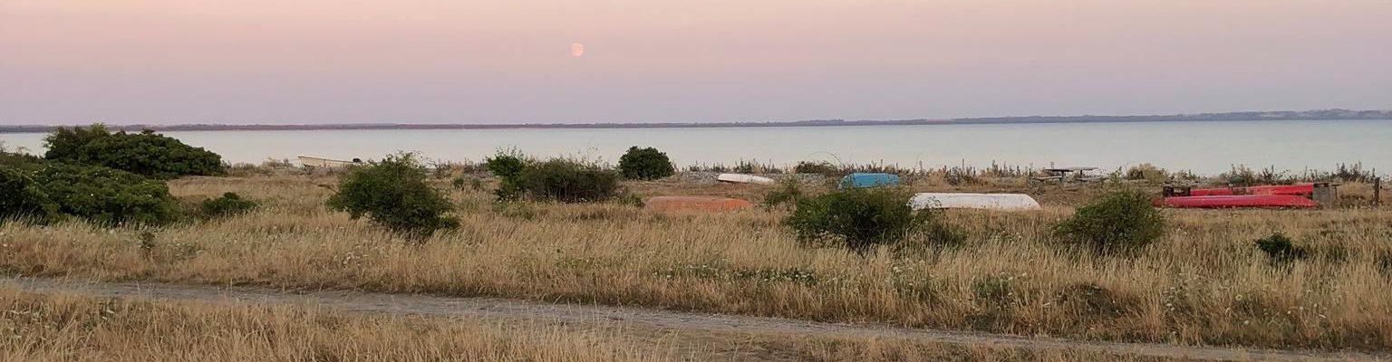 Grundejerforeningen Overby Lyng Strand